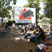 Παρουσίαση σκηνοθετών, Παρασκευή
